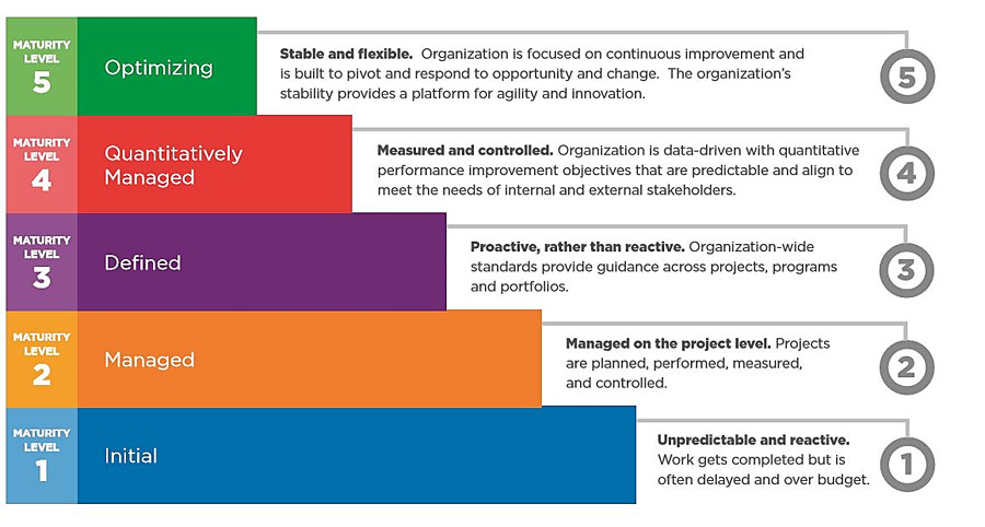 Project Maturity Assessment Template